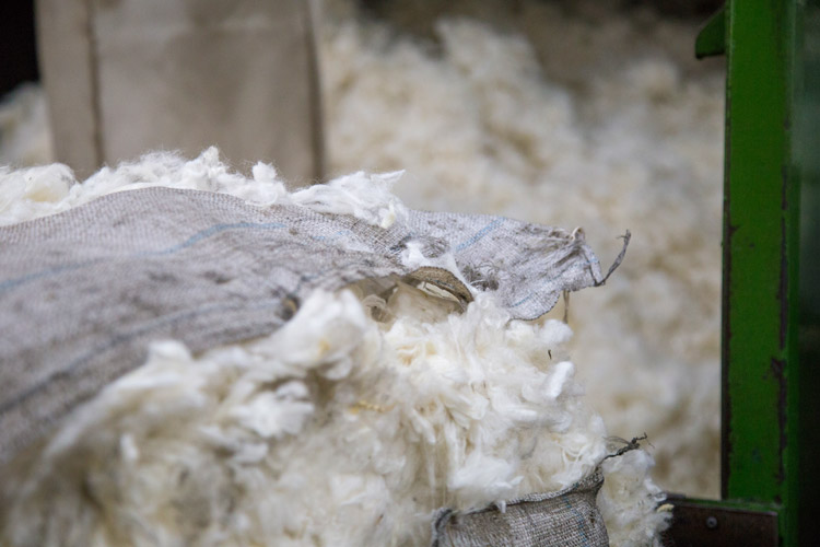 js taylor wool
